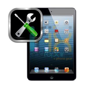 iPad Mini Diagnostic