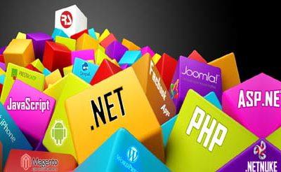 Essentials of a Web Development Company