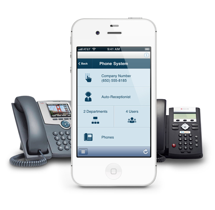 Business Voip Options