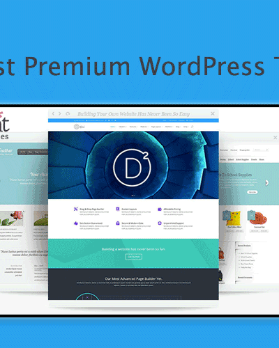 25+ Best Premium WordPress Themes From ElegantThemes