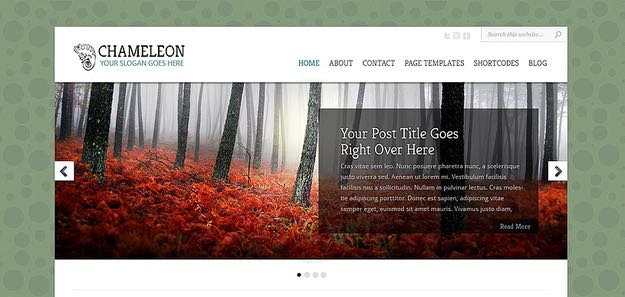 Chameleon WordPress Web Design Theme