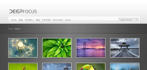 DeepFocus WordPress Photo Gallery Theme