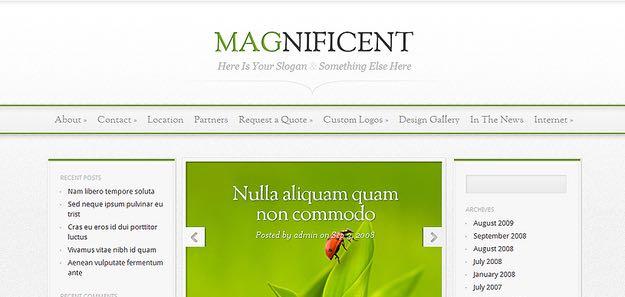 Magnificent WordPress Simple Theme