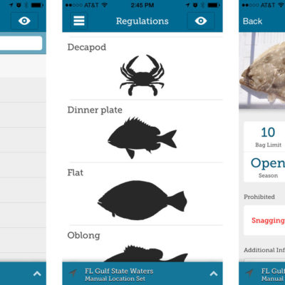 Passionate for Fishing? Try these Exceptional Apps