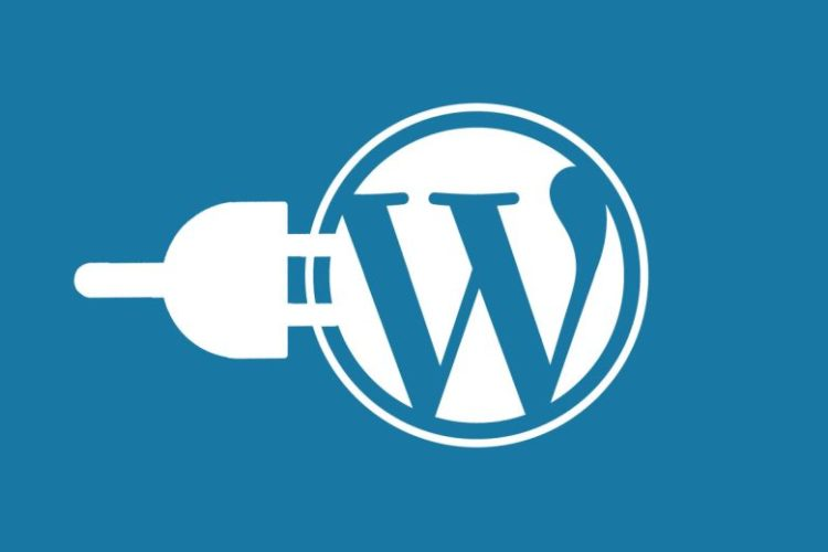 5 Plugins Every Blogger Needs on Their Site